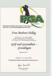 2008 Golf & Gesundheit Grundlagen